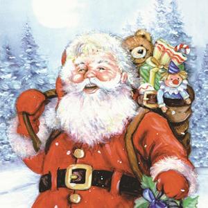Duni Weihnachtsservietten Santa on tour 20 Stk. (33cm x 33cm)